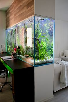Wicked 7 Extraordinary Aquarium Wall Decorating Ideas Aquarium fish design ideas on the table may be too general. Actually a lot of creative ideas to place the Aquarium to make it look unique and interest. Decor, Fish Tank Design, House Design, Wall Decor, Interior, Home, New Homes, House Interior, Interior Design
