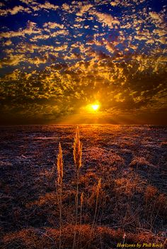 Explore Phil~Koch's photos on Flickr. Phil~Koch has uploaded 2092 photos to Flickr.