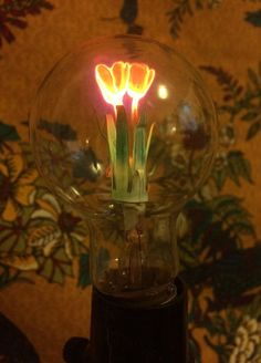5277d7faf Картинки по запросу neon flower sculpture Vintage Light Bulbs, Vintage  Lighting, Neon Flowers,