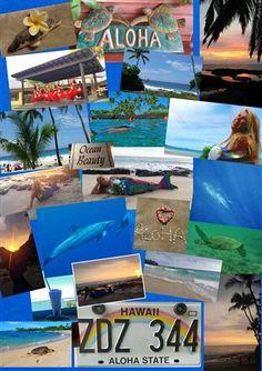 Impressions www.LisaRainbow.com  Impressionen von unserer professionellen Meerjungfrau bei unserer Schamanischen Ausbildung in Hawaii :-) http://www.meerchenhaft-eintauchen.de/12.html  Impressions from our professional mermaid during our Shamanic Training in Hawaii :-) http://www.meerchenhaft-eintauchen.de/12.html