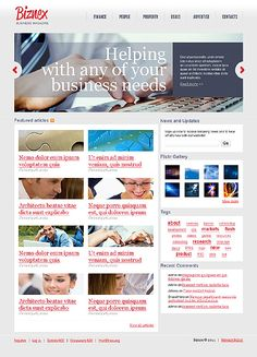 Biznex Business WordPress Themes by MariArti