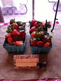 strawberry patch- farm birthday party