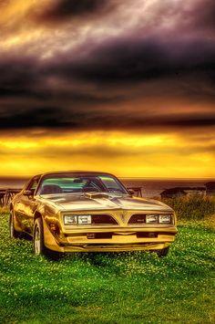 www.TransAm1978.Com - 1978 Classic Pontiac