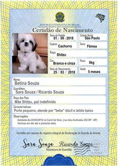 Pet Pug, Dog Cat, Pets 3, Secret Life Of Pets, Shark Party, Dog Hacks, Dog Carrier, Love Pet, Diy Stuffed Animals