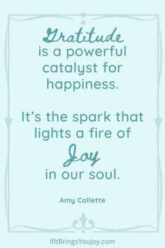 Quotes to spark joy in your day - morning, noon or night. Inspirational daily quotes to promote happiness, uplift your mood, and spark joy. Quote by Amy Collette - Gratitude is a powerful catalyst for happiness. It's the spark that lights a fire of Joy in our soul. #quotes Joy Quotes, Uplifting Quotes, Daily Quotes, Life Quotes, Inspirational Quotes, Your Smile, Make You Smile, Susan Jeffers, You Gave Up