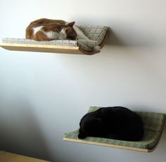 Looking for a pet bed that satisfies the needs of both you and your pet? With a slim profile and a choice of fabric options, Curve seamlessly blends in with your decor. It can be mounted anywhere on the wall, allowing maximum flexibility. The curving shape and cushion provide your pet with comfort and security when sleeping and playing on it. Appropriate for cats and small dogs. (Designer: Akemi Tanaka)