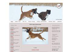 Kennel Bone Biter's on kasvattanut boksereita vuodesta 1998. Kotisivujensa päivitykseen kennel on käyttänyt jo pitkään Kotisivukone -palvelua. Boxer, Dogs, Animals, Animales, Animaux, Pet Dogs, Doggies, Animal, Animais
