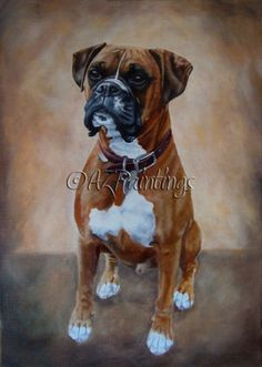 Hugo - oil painting of a boxer dog -- Anne Zoutsos