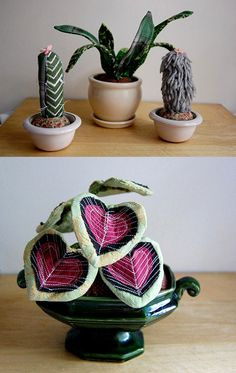 fabric houseplants (made by Sian Keegan), safer for little kitties who like to eat leaves...