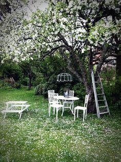 Stil Inredning & Design: Vår trädgård