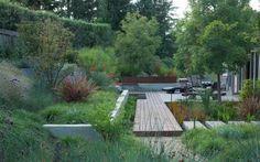 plantes vivaces, graminées et arbres pour le jardin en pente