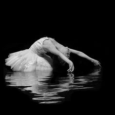 Richard Calmes - White Swan