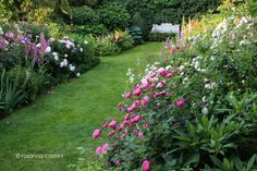 https://www.facebook.com/pages/Rosanna-Castrini-Landscape-Design/386740254679656?ref=br_rs