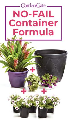 """Never design a bad garden container again with these tips! Sick of planting containers that just look """"blah""""? This no-fail container formula will set you up for success! Container Flowers, Flower Planters, Garden Planters, Flower Pots, Full Sun Container Plants, Plant Containers, Hanging Flower Baskets, Garden Yard Ideas, Lawn And Garden"""