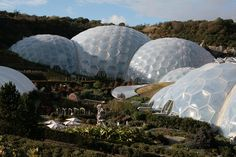 The Eden Project: Biomimicry in Architecture