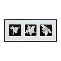 IKEA - ERIKSLUND, Picture, Motif created by Ian Winstanley.Mounted picture - ready to hang.