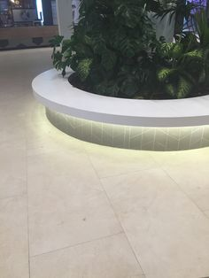 Iluminación banco