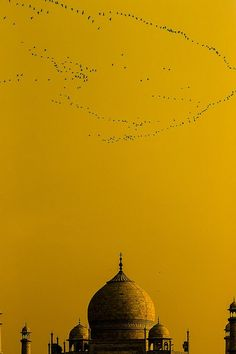 One of the most spectacular places I have ever been. Taj Mahal by eduhhz. Instant Holiday. #mustard #inspiration Jaipur, Beautiful World, Beautiful Places, Beautiful Pictures, Nepal, Shades Of Yellow, Yellow Sky, Colour Yellow, Baby Yellow