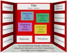 Science Fair Board Layout | Here is a second example of a great choice of layout on a board: