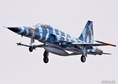 """Northrop F5E """"Tiger II"""" painted like a MIG to be an """"Aggressor""""."""