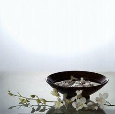 zen orquideas