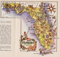 WHIMSICAL FLORIDA Map of Florida State Map Fishing by plaindealing