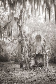 Jeff Kauck Fine Art Photography | Cumberland: Island of Conflict and Change | 5