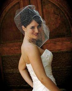 birdcage veil.