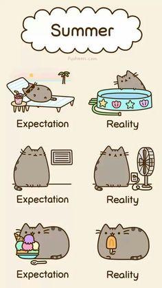 My summer...