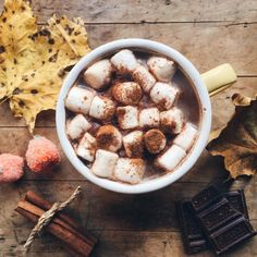 hot chocolate fixes everything.