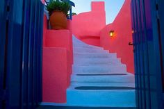 Tropical colors of the Mediterranean