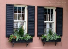 Pink Historic Charleston, SC Peach Stucco House with Black Shutters and Flower Boxes 8x10 Photo