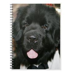 NEWFOUNDLAND DOG NOTEBOOK