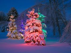 17 Best images about Christmas on Pinterest   Free screensavers ...