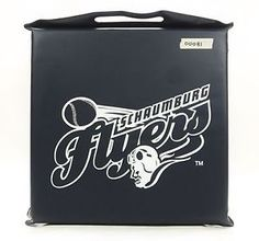 Schaumburg Fliers.  A thing of the past.  http://stores.ebay.com/The-Another-Corner