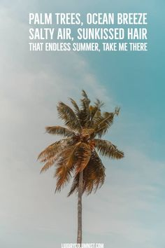 Palm trees, ocean breeze. Salty air, sunkissed hair. That endless summer, take me there.