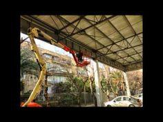 הדברת מזיקים תל אביב,0543032225,מדביר 24  שעות ,הדברה ירוקה,הדברה,הרחקת ...