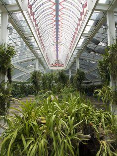 Chapultepec Botanical Garden, Mexico City.  Photo: mimirama via Flickr