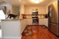 Even the house cat loves the new kitchen. Paris Kitchen, Refacing Kitchen Cabinets, Interior Windows, Before After Kitchen, Kitchen Remodel, Textured Glass Door, Traditional Kitchen, Kitchen, Custom Kitchen Cabinets