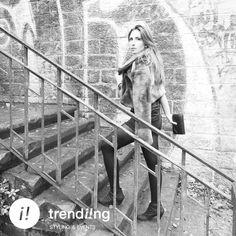trends blog