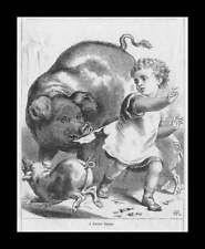 Pig, Sow Takes Bite Scares Child, Antique Engraving, Print, Original 1892