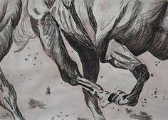 Christina J Cannon Art   HORSES   Wix.com