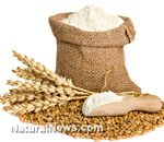 Gluten confirmed to cause serious weight gain, or 'wheat belly' - scientific research
