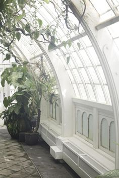 Curved Windows for a Solarium/Greenhouse! Pergola, Cottage In The Woods, Winter Garden, Windows And Doors, Arched Windows, Architecture Details, Canopy Architecture, Beautiful Architecture, My Dream Home