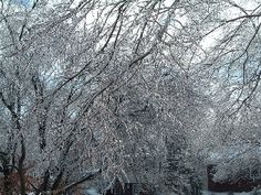 Snow and Storm Winds Slam New England With Early Winter Blast - http://earthchangesmedia.com/snow-and-storm-winds-slam-new-england-with-early-winter-blast