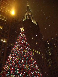 Christmas in Chicago, oh yes.  Lights on Michigan Ave, shopping on State Street, lunch at the Walnut Room, and the Christmas tree lighting.  Wonderful!