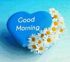 Good Morning Flowers Gif, Good Morning Sunshine, Good Morning Good Night, Happy Morning, Good Morning Greetings, Good Morning Wishes, Good Morning Friends Images, Morning Quotes Images, Good Morning Massage
