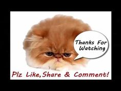 """Funny Cat Fails Try not to Laugh Funny Cats videos compilation try not to laugh 2016 - http://positivelifemagazine.com/funny-cat-fails-try-not-to-laugh-funny-cats-videos-compilation-try-not-to-laugh-2016/ http://img.youtube.com/vi/0Gyt9r4Zfg8/0.jpg  ***Get your free domain and free site builder*** Click to Surprise me! Please follow and like us:  var addthis_config =   url: """""""",  title: """""""""""