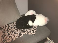 doggo with his 🐰 • 💕
