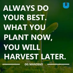 Always do your best. What you plant now, you will harvest later - Og Mandino Quotes - Udyomitra